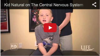 From Dr. Waldron: Listen to Kid Natural — chiropractic helps maintain your central nervous system